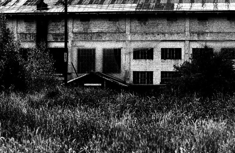 Old race course grand stand Canonphotography Walking Dead Moment Popular Photos OpenEdit EyeEm Best Edits Old-fashioned Old Things Detail Popular Monochrome Blackandwhite Walking Dead TIme Walking Dead Spooky Sceary Spooky Atmosphere Spooky House