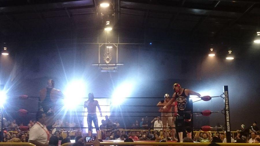 Santo Jr. Lucha Libre Mexican Culture Comarca Lagunera