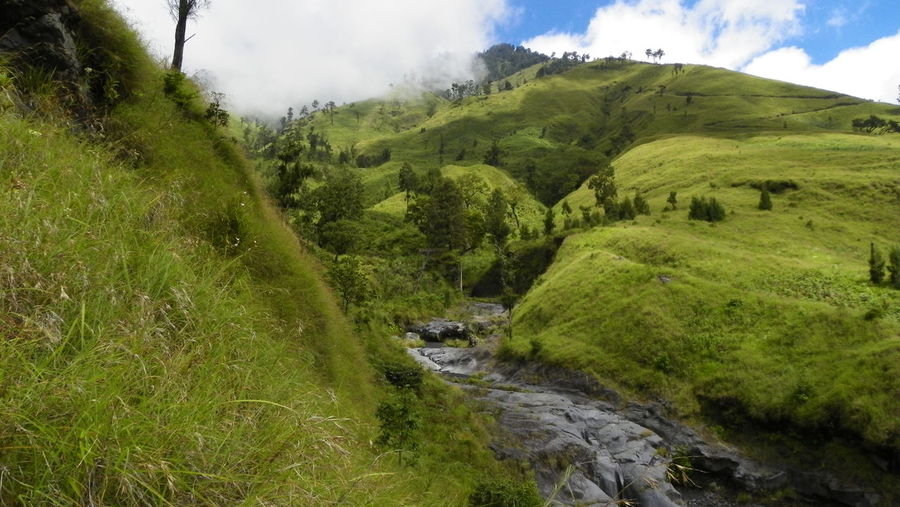 Landscape around Rinjany Beauty In Nature Brook Cloud - Sky Day EyeEmNewHere Grass Green Color Growth Landscape Lombok Mountain Nature No People Outdoors Scenics Sky Slope Stream Tranquil Scene Tranquility Vegetation Wallace Line Wilderness