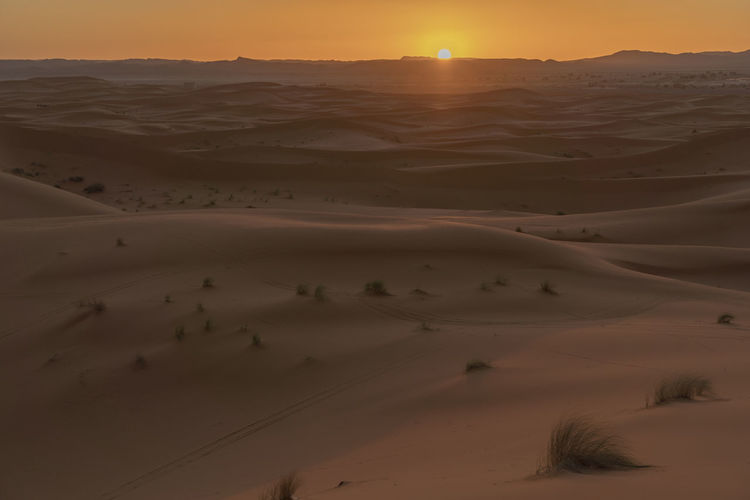 Desert Landscape Sand Dune Tranquility Tranquil Scene Arid Climate Sand Sunset Sky Remote No People Desert Landscape Desert Beauty Desert Sunset Golden Hour Sand Dunes North Africa Middle East Sahara Sahara Desert Expanse Vista Horizon Horizon Over Land Outdoors
