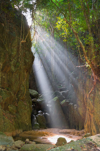 Wang Sao Thong waterfall drained during summer, Ko Samui, Thailand Amazing Beauty In Nature Day Forest Ko Samui Koh Samui Lens Flare Light Light And Shadow Majestic Nature Non-urban Scene Outdoors Scenics Sun Sunbeam Thailand Tourism Tranquil Scene Tranquility Travel Tree Wang Sao Thong Water Waterfall