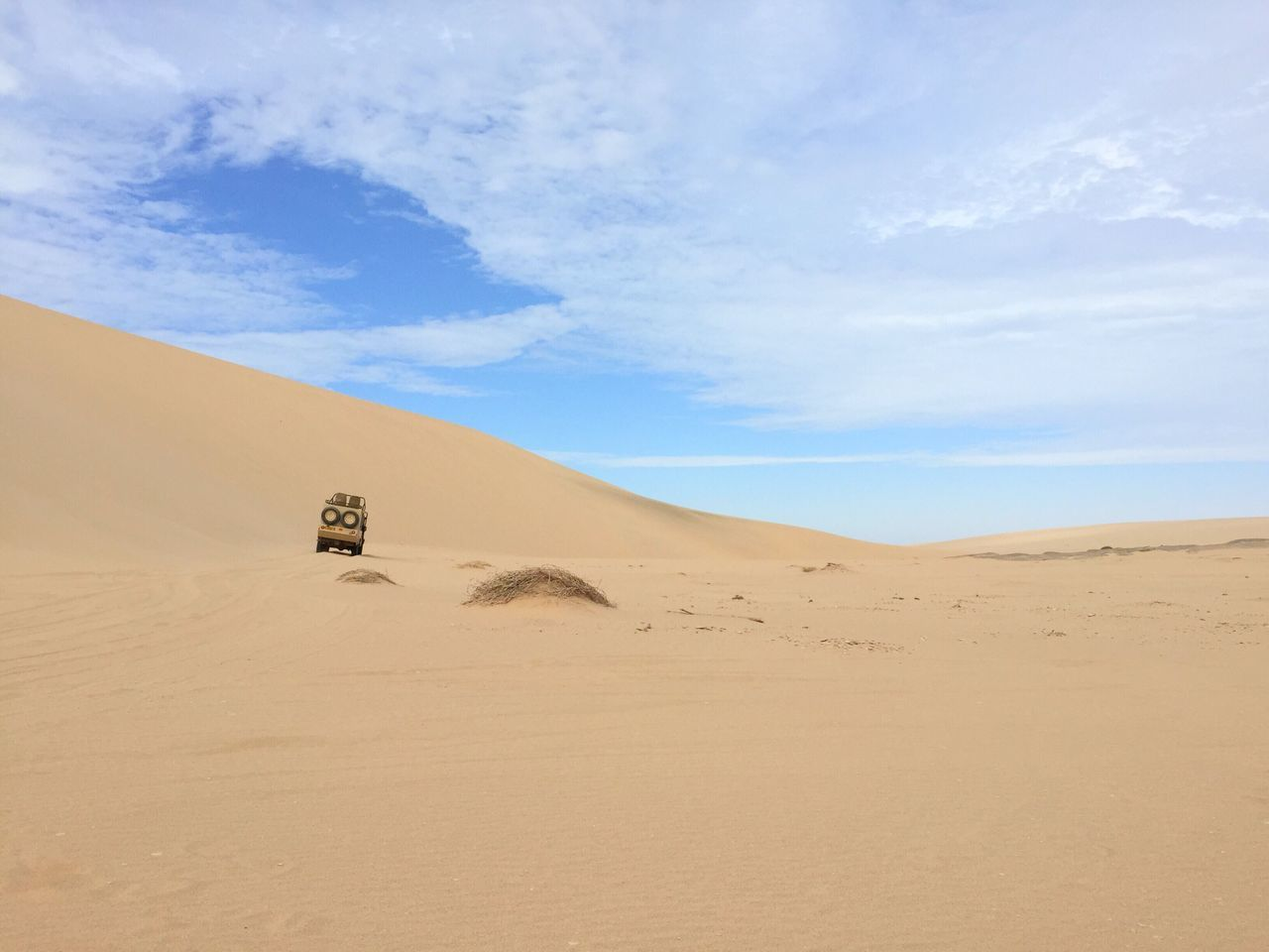desert, sand dune, sand, sky, arid climate, nature, landscape, scenics, beauty in nature, tranquil scene, day, outdoors, tranquility, cloud - sky, blue, no people, mammal