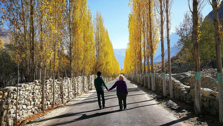 Rear view of people walking on street amidst plants during autumn
