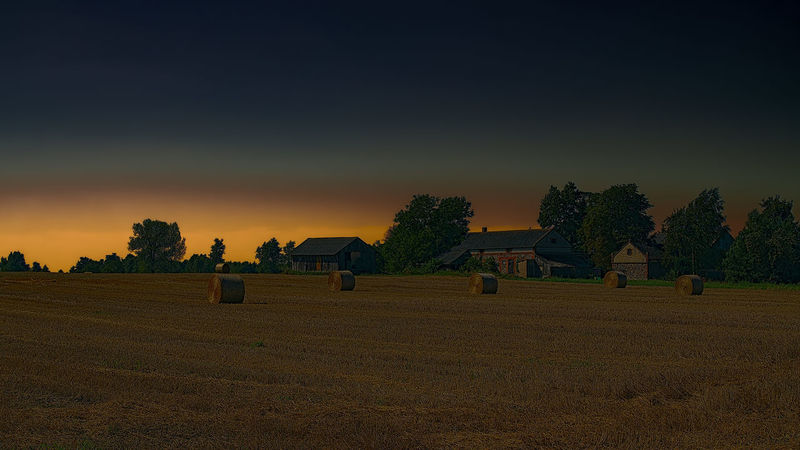 Straw bales on the wheat field after harvesting. Village farming landscape. Sky Field Landscape Tree Land Plant Environment Beauty In Nature Tranquil Scene Scenics - Nature Tranquility Agriculture Farm Nature Hay Rural Scene Sunset Bale  Grass No People Outdoors Agricultural Field Food Industry Financial Planning