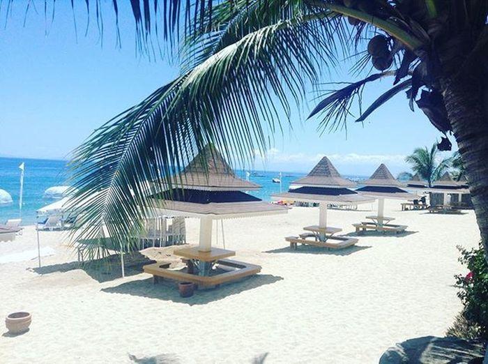 Mornings be like 🏊🏽😎☀️Beachlife Summer2016 Bluecoralbeachresort Byahenitin2016 Summerlover Wheninbatangas Wheninlaiya Batangas Laiya Sanjuan Travelgram Wanderlust Philippines