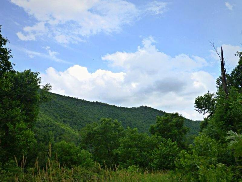 Summer2014 SlateRun Pennsylvania Color Photography Trees Blue Sky Clouds And Sky Mountains Nature Outdoors Hiking