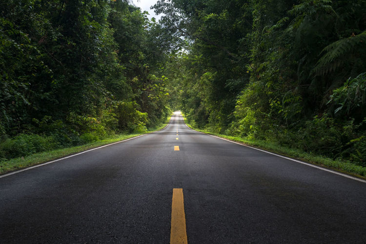 Long road in deep forest ASIA DEEP FOREST Driving Natural Road Straight Thailand Transportation Travel Beauty In Nature Drive Khao Yai National Park Long Road Outdoors Road Safety Scenics Summer The Way Forward Tranquil Scene Tranquility Transportation Travel Destinations