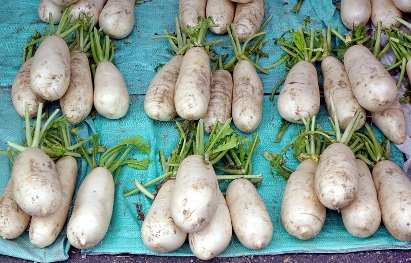 Big white Chinese radishes or daikon are popular ingredient in Taiwan cooking Vegetable Healthy Eating Raw Food Root Vegetable Market Organic White Radish Chinese Radish Daikon Radish Daikon Agriculture