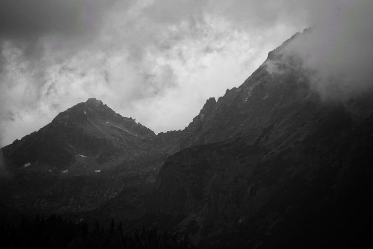 High Tatras-Slovakia Perspectives On Nature Mountain Nature Beauty In Nature Sky No People Outdoors Scenics Fog Day Monochrome Bw Blackandwhite Moody Bw_collection Nature Tree Wild Forest Black And White Wildlife & Nature Beautiful Slovakia Hightatras  Beautiful Nature