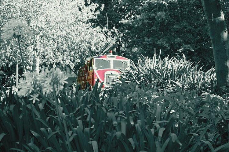 Firetruck Old