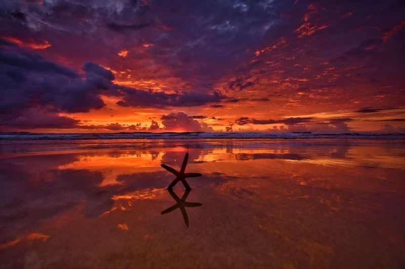 Gold Coast Sunrise Australia Queensland Gold Coast Vacations Sunrise Water Sky Sea Beauty In Nature Tranquility Scenics - Nature Orange Color Nature Cloud - Sky Reflection Beach Tranquil Scene Land No People Outdoors Idyllic Dramatic Sky Environment Low Tide