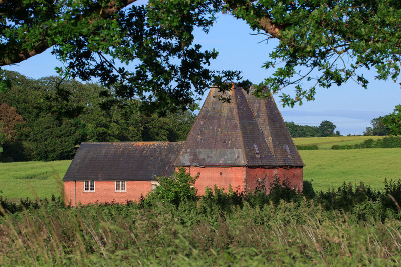 Oast House, Garden Of England , Kent, England. No People Day Architecture Vivid International Hops Beer Drying Process Rural Scene Countryside Travel Destinations Tourism Getty Images EyeEm Gallery Plant Tree Field Land Grass Nature Built Structure Sky Green Color Growth Building Exterior Landscape House Outdoors Environment Building Abandoned