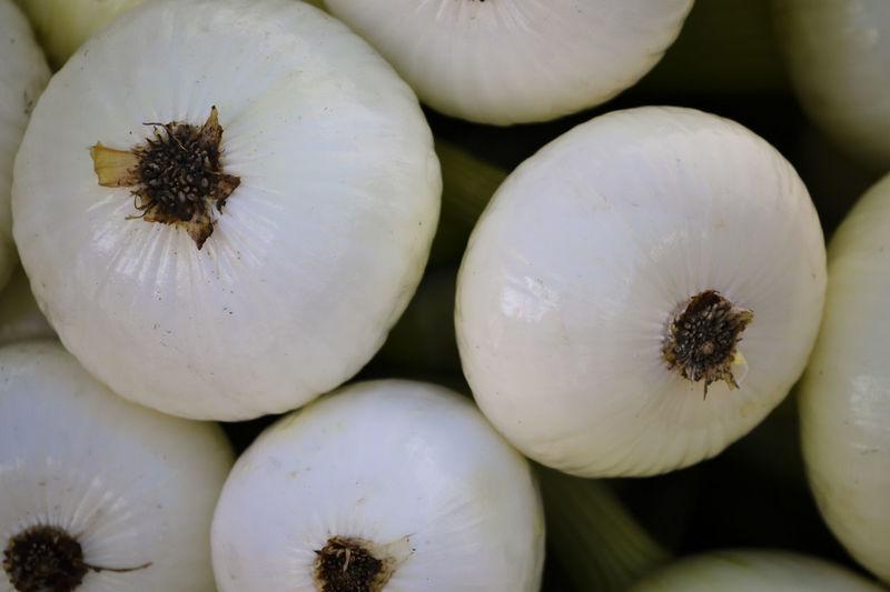 A bin of Onion