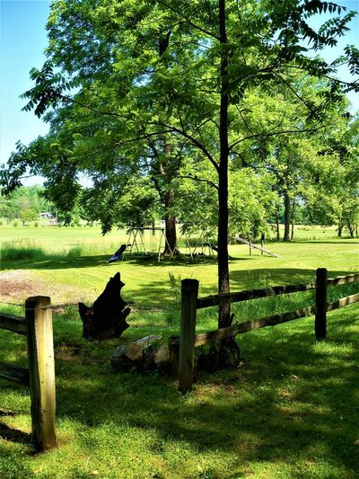Split Rail Fence Country Living Fences & Beyond Indiana Wood Beauty In Nature Country Life Countryside Day Fence Fence Post Fencepost Fences Field Green Color Growth Land Nature No People Outdoors Plant Tranquility Tree Wood - Material Wooden Wooden Post