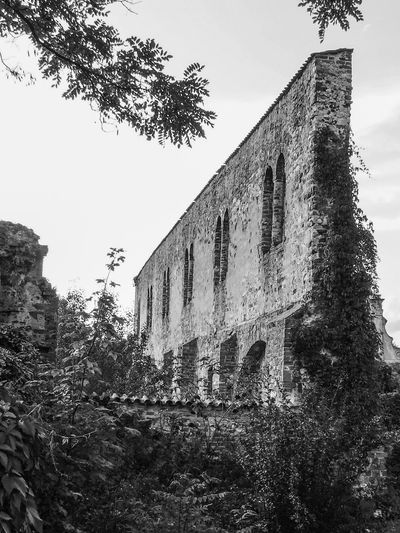 Architecture Black And White Black And White Collection  Black And White Photography Building Exterior Built Structure Damaged Deterioration Exterior History Low Angle View No People Obsolete Old Outdoors Place Of Worship Ruined Ruins Sky Tall Tall - High The Past Tree Weathered