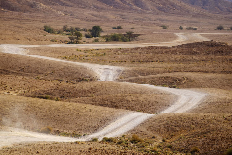 Arid Climate Beauty In Nature Curves Curves And Lines Day Desert Desert Deserts Around The World Landscape Meandering Nature No People Outdoors Path Road Saudi Arabia Scenics