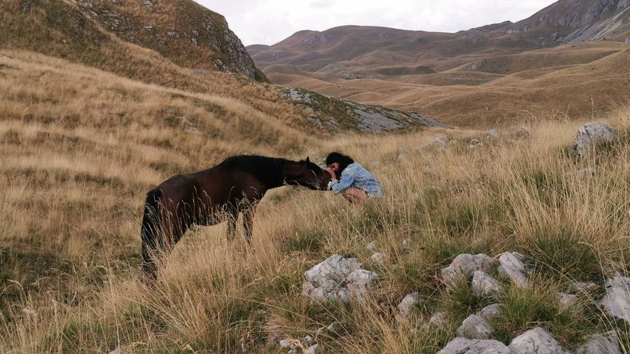 Young woman stroking horse on land