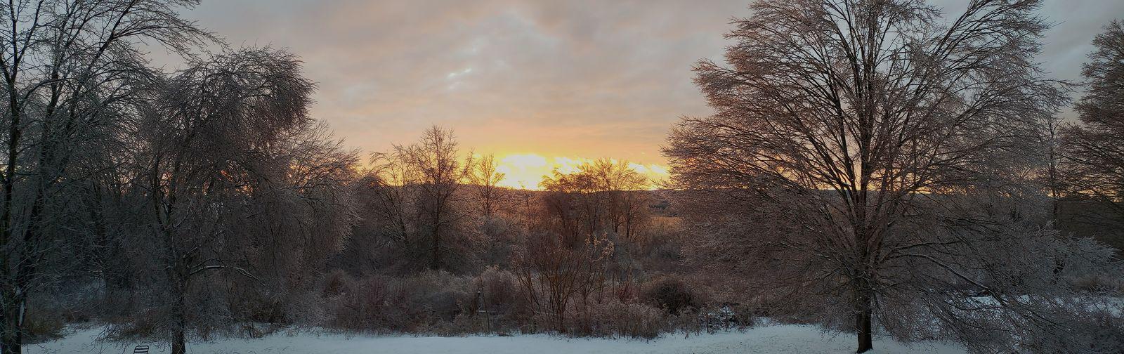 Winter ice storm Pixelated Tree Snow Cold Temperature Winter Sunset Sky Cloud - Sky