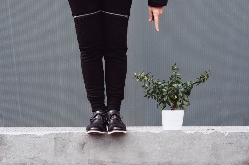 Men Finger Plant Potted Plant Plant In A Pot Leaves Hand One Person One Man Only Low Section Human Leg Standing Close-up Human Foot Footwear Pair Sole Of Foot Personal Perspective Feet Shoe Leg Shoelace Pants