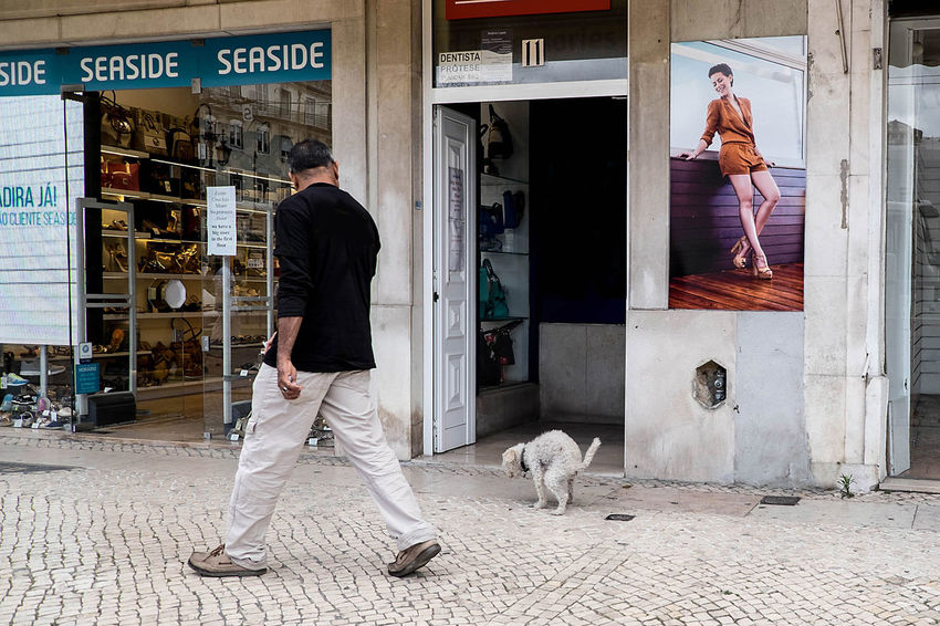 TheWeekOnEyeEM UNPOSED Candid Photography Dog Lifestyles Lisbon Real People Street Street Photography Streetphotography