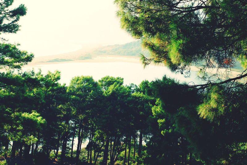 İztuzu Beach Dalyan/Muğla/TURKEY