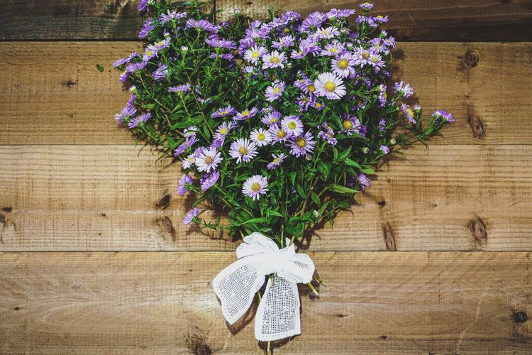 High angle view of purple flowering plants on wooden table