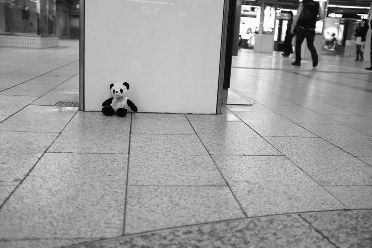 Streetphotography Monochrome Panda