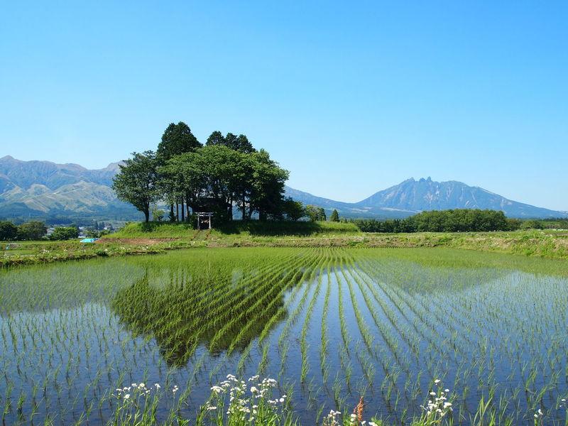 Beauty In Nature Clear Sky Japan Aso Landscape Mountain Mountain Range No People Reflection Rice Field Shrine Of Japan Sky Tranquil Scene Volcano Landscape Water