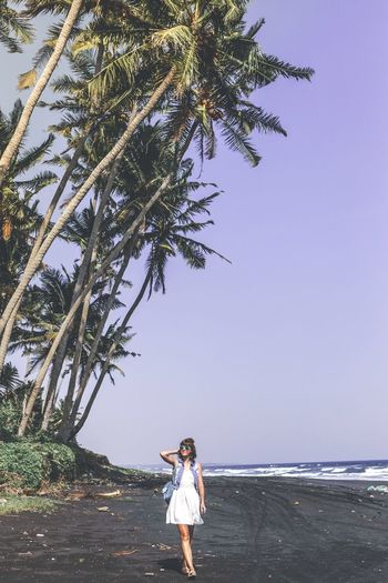Full Length Of Woman Standing By Palm Tree At Beach Against Sky