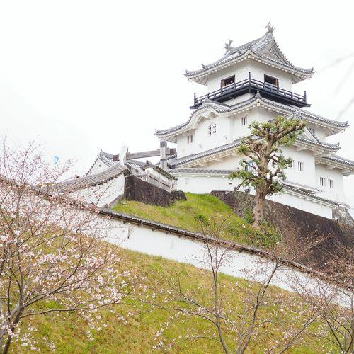 掛川城 Japanese Castle Traditional Architecture Mirrorless Japan Showcase April