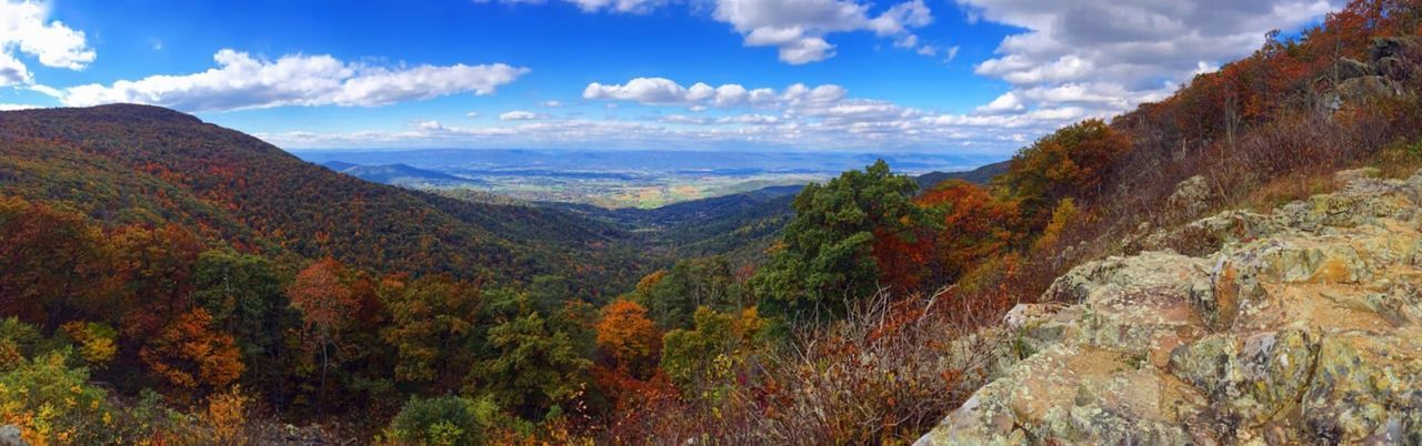 Far and wide EyeEm Nature Lover Scenic Panorama Skyline Drive Mountain Mountain View Mountain Views Fall Colors Autumn Virginia