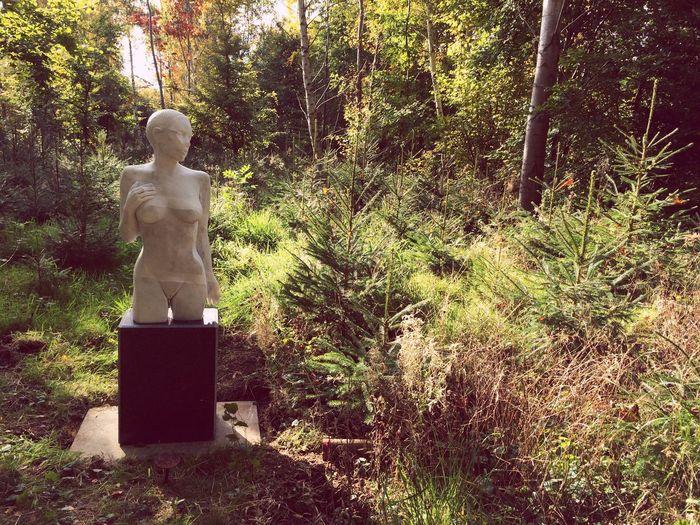 Sculpture in the sun. Sculpture Park Sculpture Art First Eyeem Photo