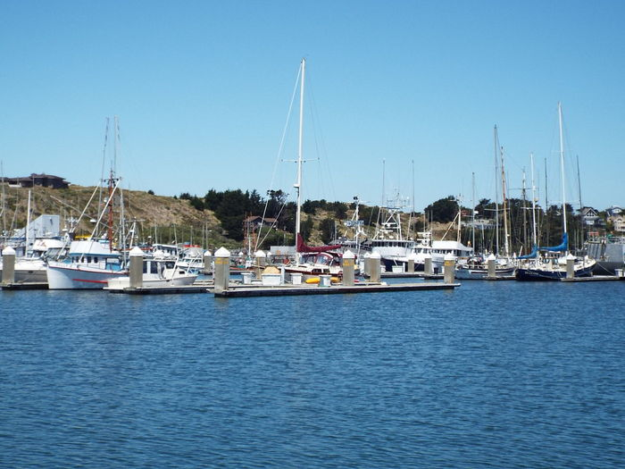 boat marina Bodega Bay Marina Natical Boats And Water Dockside View Marine Life