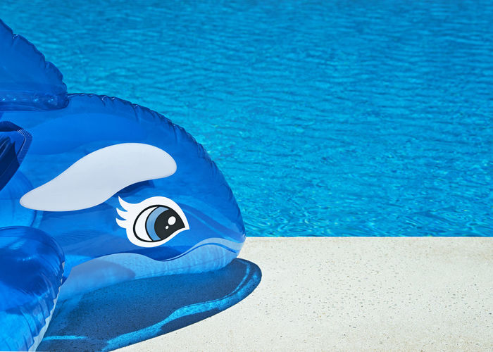 Bright colorful summer vacation background showing an inflatable dolphin at the side of the pool on a sunny warm day, ideal for copy space and text made easier from selective focus Background Blue Check This Out Copy Space Dolphins Fun Happy Hoilday Outdoors Part Of Personal Perspective Poolside Solitude Summer Tranquility Vacation Water Color Pallete