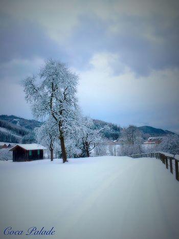 Winter Tadaa Community Eyeem Natur Lover Nature Landscape Melancholic Landscapes Wintertime Winterwonderland Austrianphotographers Eyem Best Shots Ein weißer Mantel legt sich über die Welt, Wenn der Winter sie in seinen Händen hält.