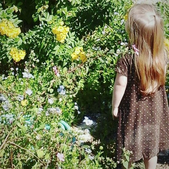 A little sis of mine. 😊 Childhood Child One Girl Only Standing Flower Flowers Garden Girlhood Beautifulgirl Sister Children Only One Person Outdoors Blond Hair