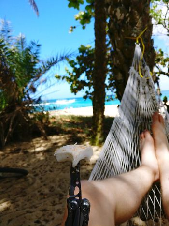 Tree Human Body Part One Person Holding Human Hand Leisure Activity Adults Only People Real People Day Adult Outdoors Water Close-up Hammock One Woman Only Nature Sky Coconut Leatherman Chill Hawaii Aloha
