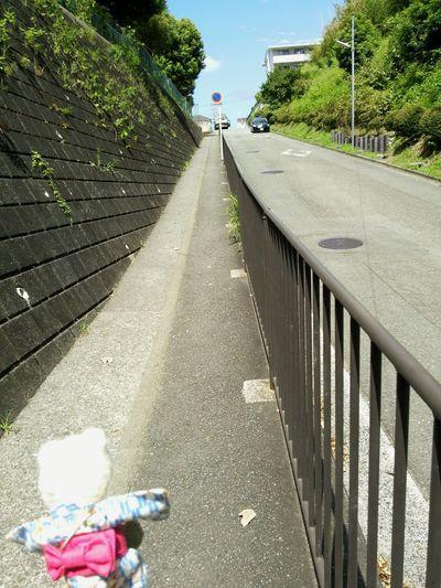 Stuffed Animal Frog Take A Walk Sloping Road 浴衣(yukata)