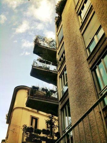 Balconi zzzz Milan Italianeography Eye4photography  Tadaa Community Milano Italian Tadaa Friends Italy Portanuova Milanoportanuova