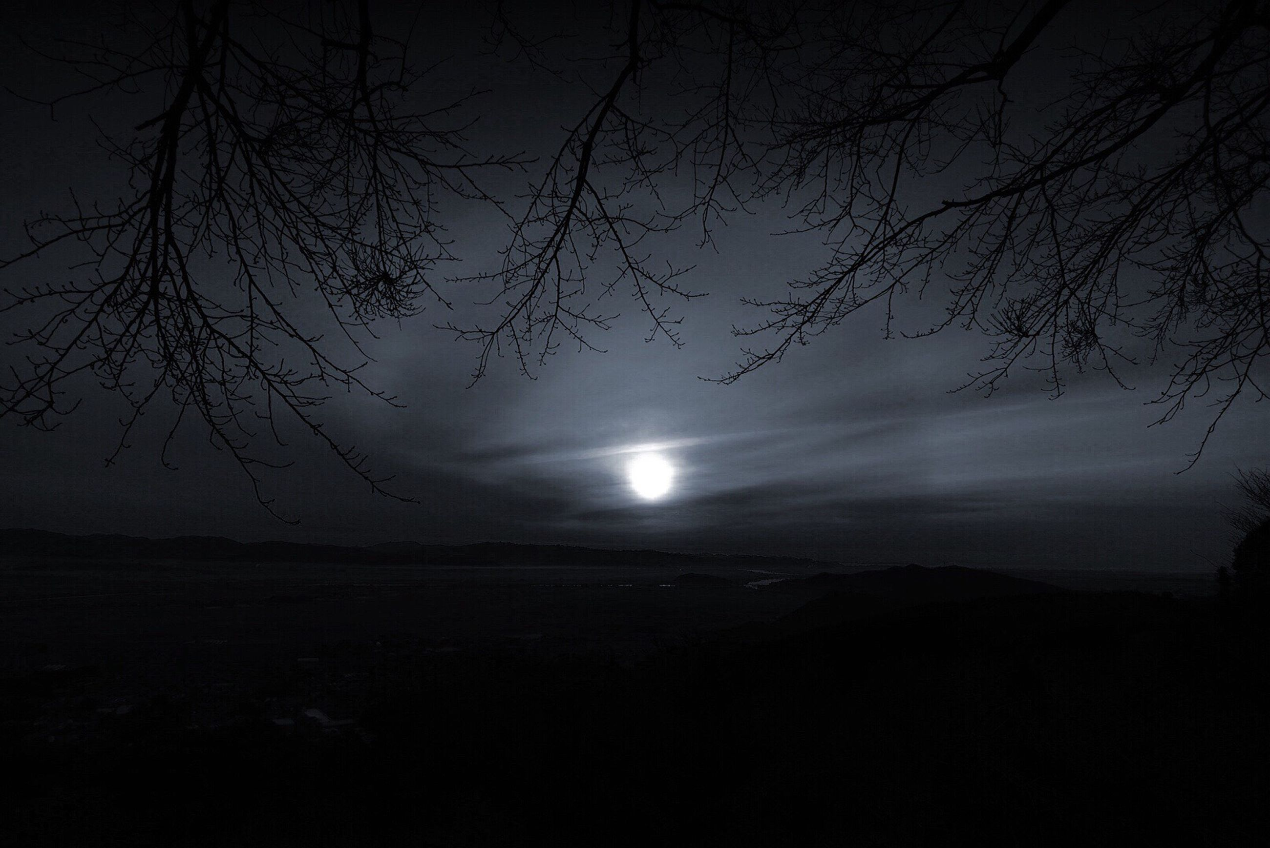 nature, beauty in nature, tranquility, tranquil scene, scenics, night, sky, idyllic, outdoors, tree, no people, horizon over water, moon, astronomy