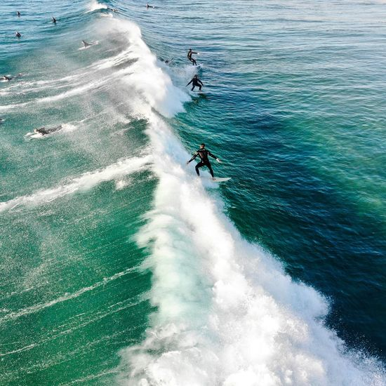 High angle view of men surfing in sea