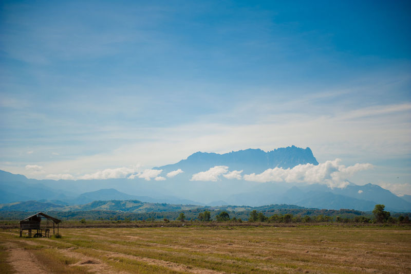 Mount Kinabalu view from Kota Belud, Sabah Kota Belud Mount Kinabalu Beauty In Nature Blue Cloud - Sky Day Environment Field Land Landscape Mountain Mountain Range Nature No People Non-urban Scene Outdoors Plant Remote Scenics - Nature Sky Tranquil Scene Tranquility