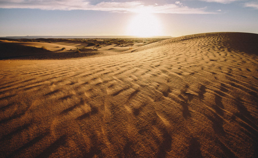 Adventure Africa Arabic Arid Climate Beach Beauty In Nature Day Desert Exploration Landscape Morocco Nature Remote Sahara Sahara Desert Sand Sand Dune Scenics Sky Sunlight Tire Track Tranquil Scene Tranquility Travel Travel Destinations