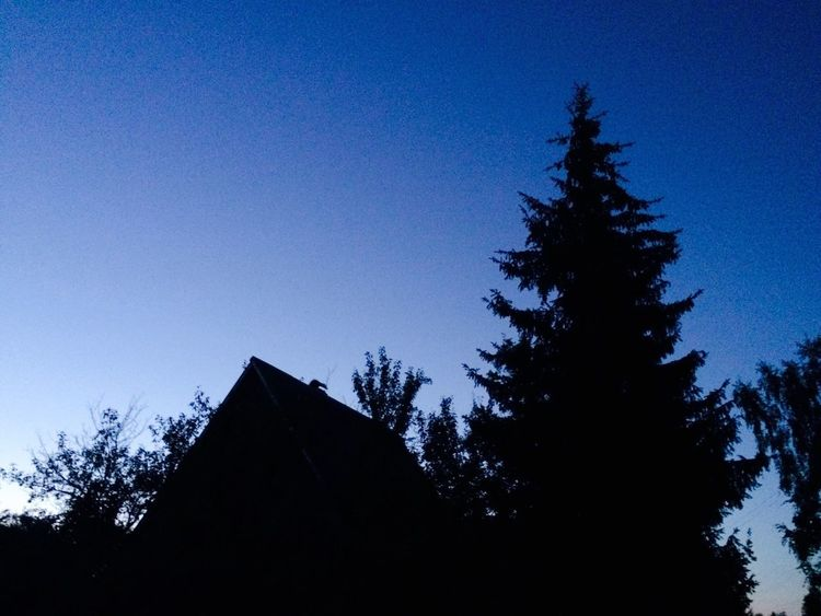 Blue Wave northern skies Blue Pine North House Silhouette Nihgt Sky Darkness And Light Dark Cold Black Amazing