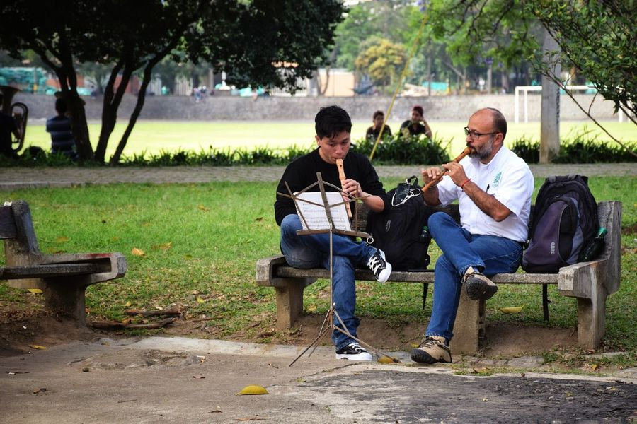 Music connects people Friendship Music Landscape Flute Togetherness People People Watching D5300 Nikon 18-140mm Tree Full Length Sitting Togetherness Men Friendship Relaxation Park - Man Made Space Casual Clothing Park Bench Park Friend Seat Inner Power