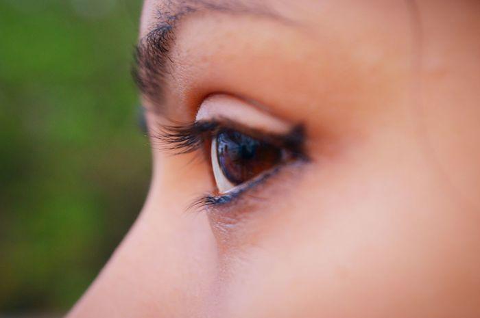 Looking Through...