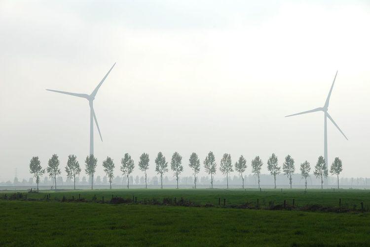 Wind turbines on grassy field