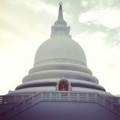 Grandeur Sculpture SriLanka Unawatuna Travel Tourist Sightseeing Tour Buddhism Instaphoto Instatravel Instagram Buddha White Gold Temple Travel Photography Travelgram Photooftheday Wunderlust Jetsetter Photography