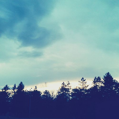 AndjelaMancic First Eyeem Photo Wood Sky Nature Blue