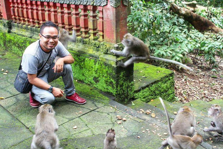 Monkey Monkey Forest Animal Photography EyeEm Indonesia EyeEm Best Shots EyeEm Gallery EyeEmIndonesiaKu Travelensa Alas Kedaton Bali, Indonesia
